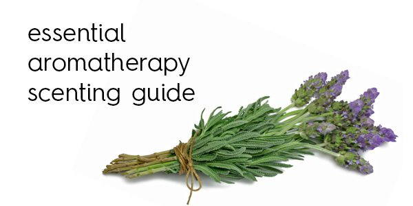 essential-aromatherapy-scenting-guide