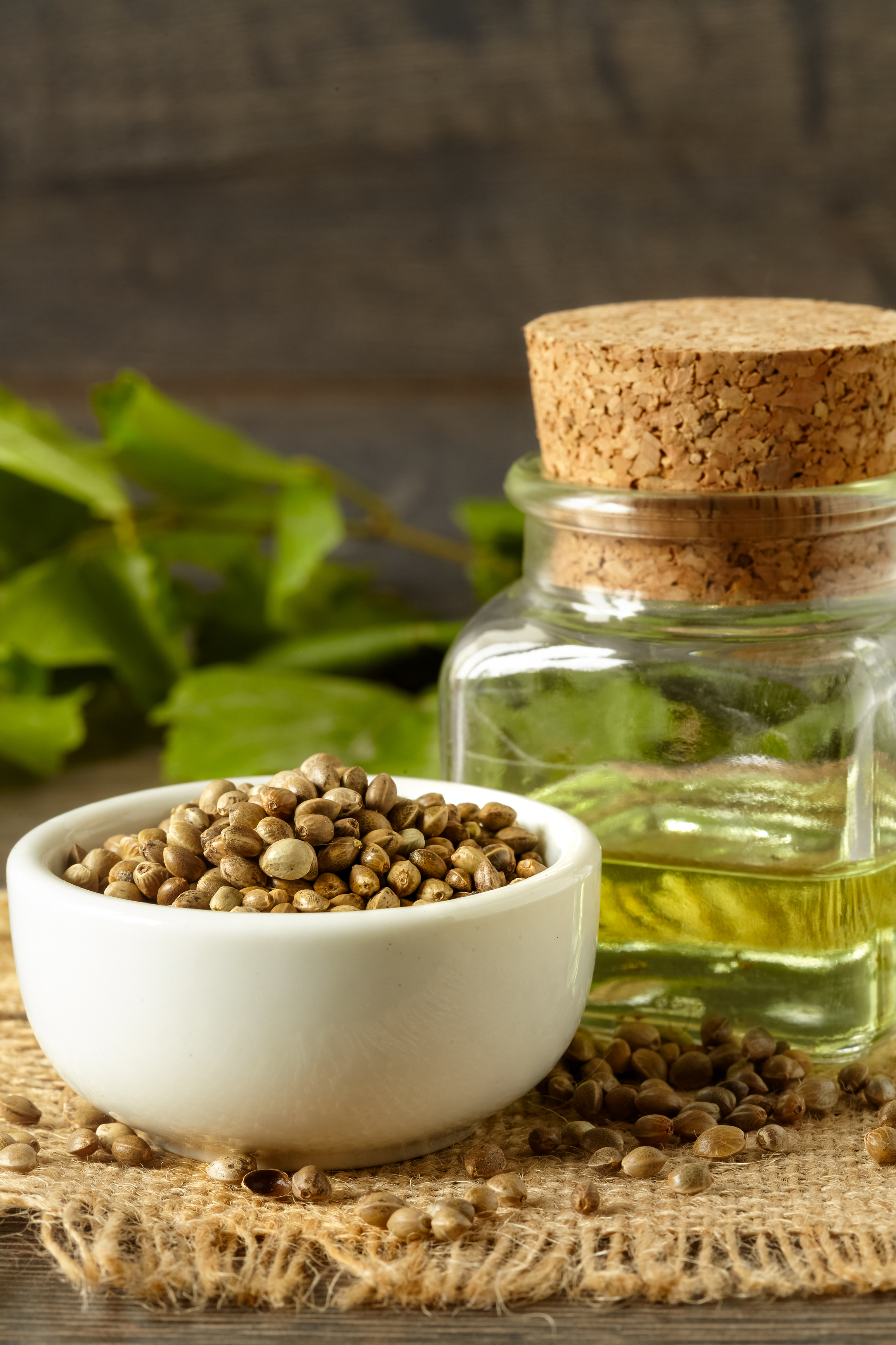 Hemp seed oil versus CBD oil- what's the difference?