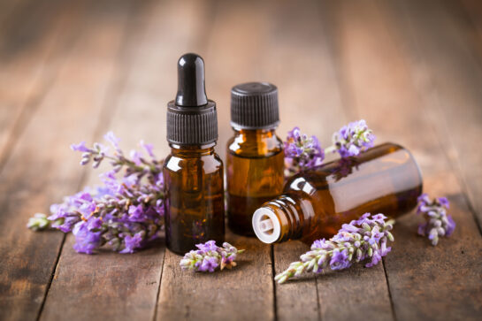 lavender oil skincare plant how to