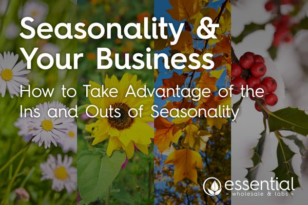 seasonality your business how to handle adapt cash flow