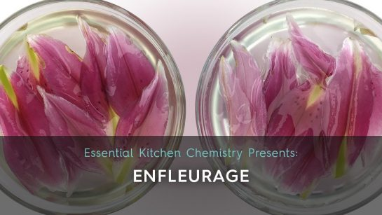 How to make an enfleurage: two lily blossoms in 2 bowls in oil. Cosmetic recipe